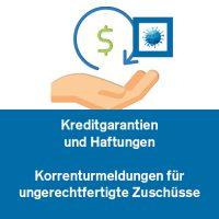 Kreditgarantien und Haftungen, Korrekturmeldungen für ungerechtfertigte Zuschüsse